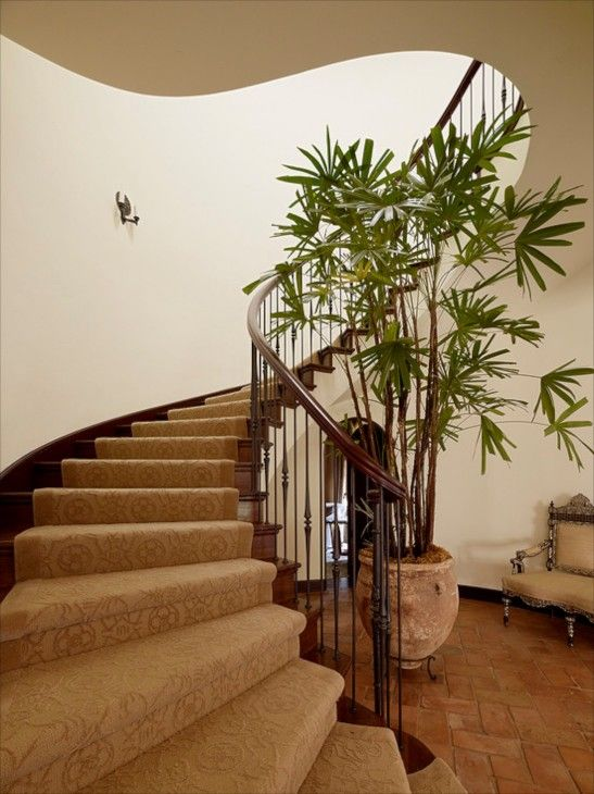 Best Making Stairs Safe Staircase Design Stairs 400 x 300