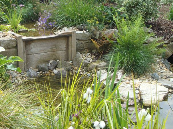 Top pond to meandering stream as a customer water feature pond life water features for Garden of life customer service