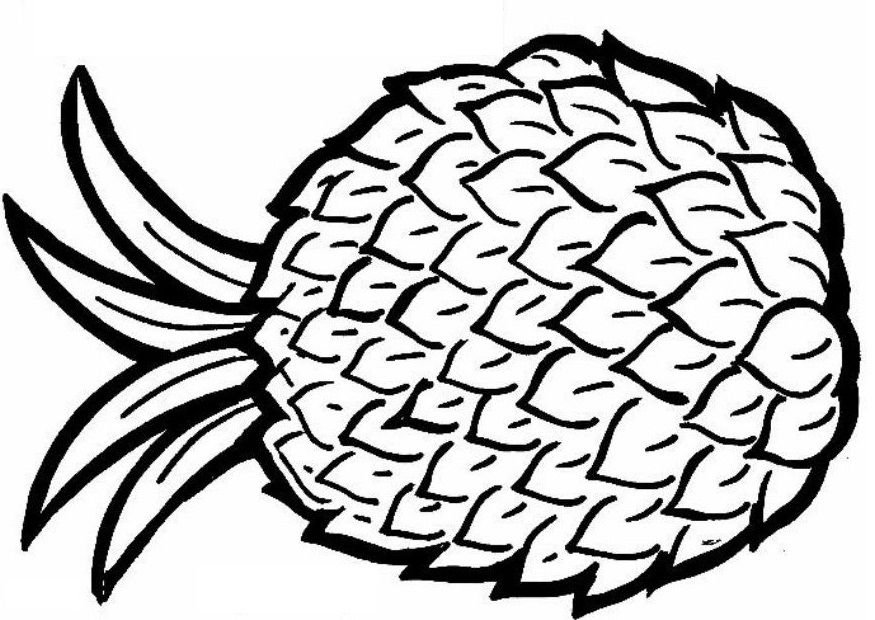 Pineapple coloring pages my coloring pages Writing With