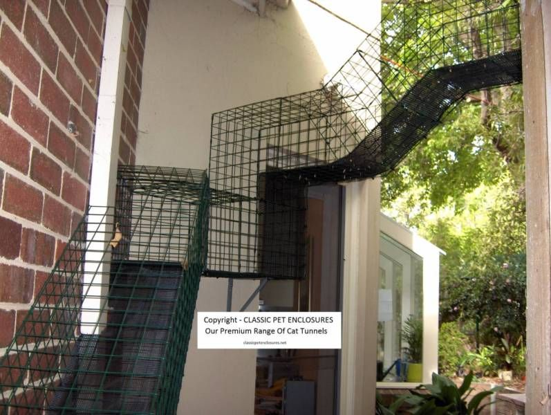Pin By Jim Coombs On Cat Enclosures Pet Enclosure Gumtree Australia Cat Enclosure