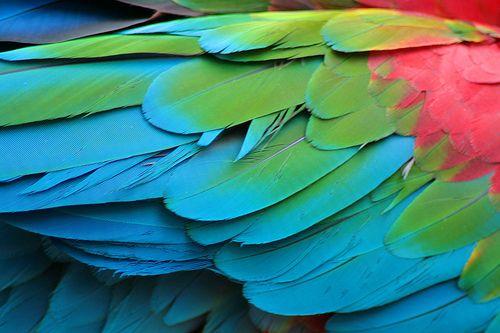 God's amazing hands | Design | Colours | Pinterest ...