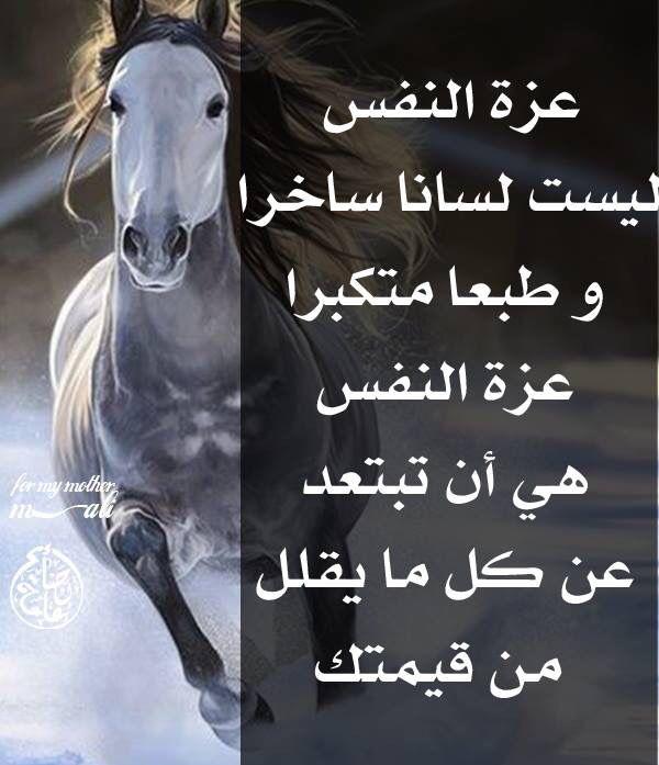 عزة النفس عز نفسك يعزك الله Jokes Animals Horses