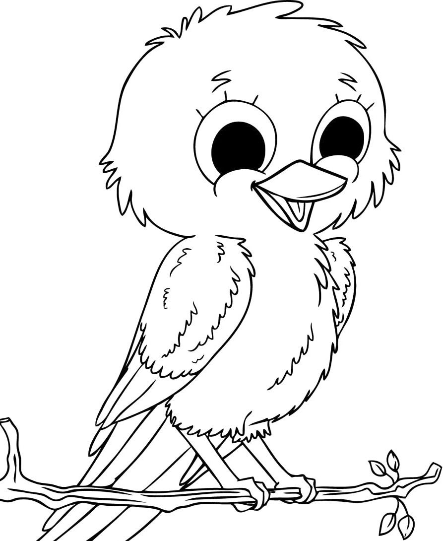 Pictures Child Cute Birds Coloring For Kids Bird Drawings