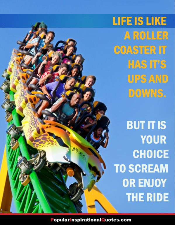 Life Is Like A Roller Coaster Quote Live Is A Roller Coasters