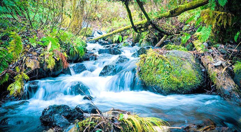 paisajes bonitos de primavera verde rio agua natural | Judith y sus ...