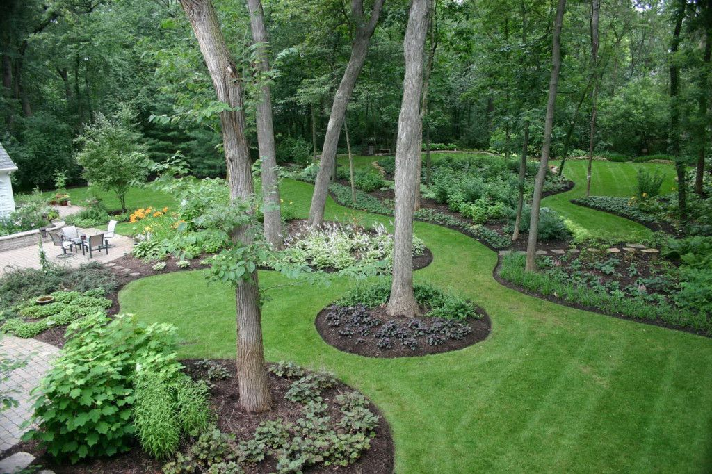 ideas landscaping trees