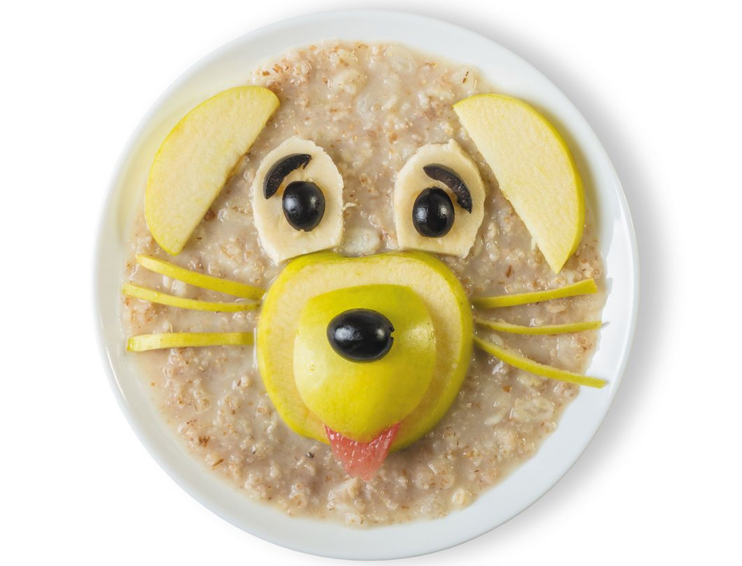 Fiber a friendly food for your dogs health high fodmap
