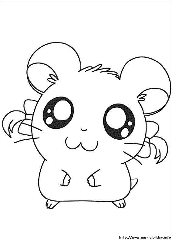 baby hamster ausmalbilder