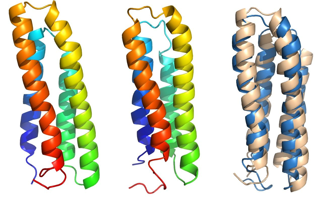 Cell membrane proteins give up their secrets Cell