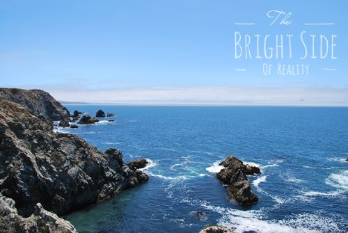 Family Travel: Bodega Bay Tide Pools & Whale Watching in California