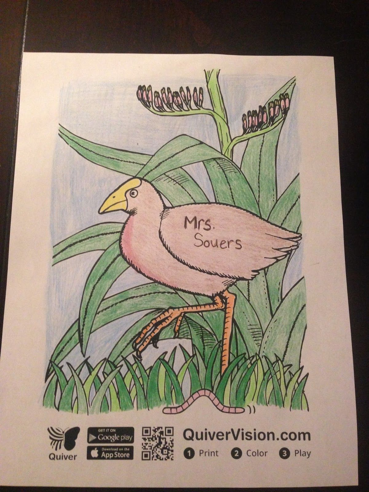 Coloring pages for quiver - The Traveling Educator Quiver Vision A Coloring App