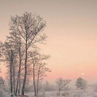 Зимние пейзажи фото #красота #пейзаж #природа #photography #nature #amazing #new #pictures #beautiful #naturek #landscape #beauty
