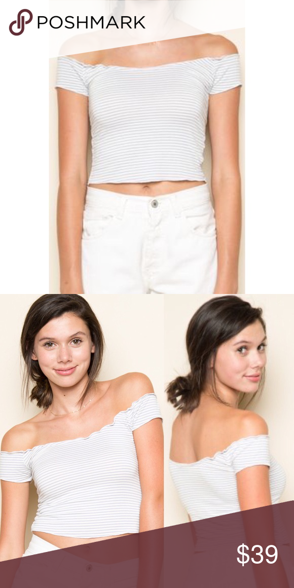 2e609432eae8c NWT brandy melville anya top NWT brandy melville white   grey striped anya  top. SOLD OUT. one size. bought for retail+tax+shipping. trying to make my  money ...