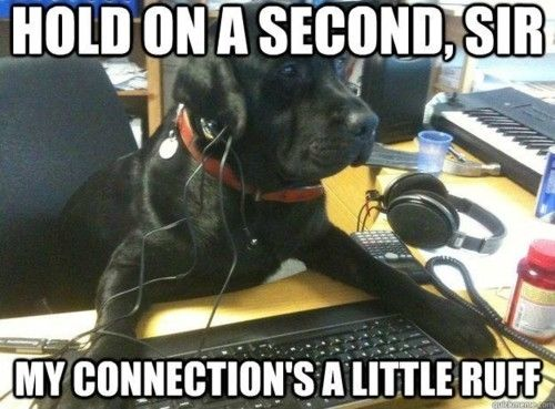 My Connection Is A Little Ruff Pictures Photos And Images For