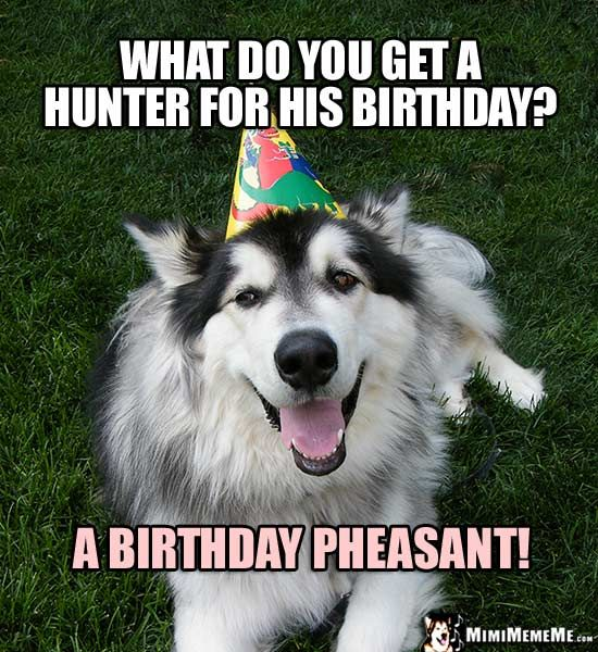 c868e39579ea140c9007b9bc9eb5e649 party dog asks what do you get a hunter for his birthday? a