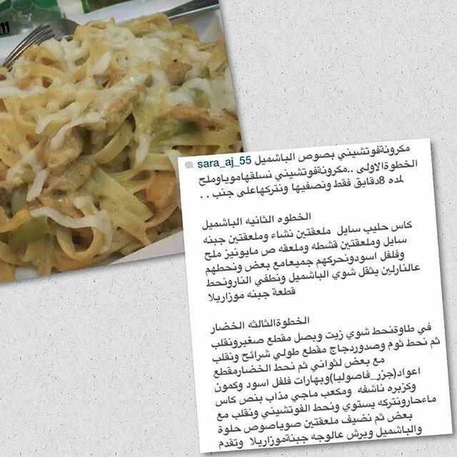 فوتوشيني بالباشميل Food Cabbage Vegetables