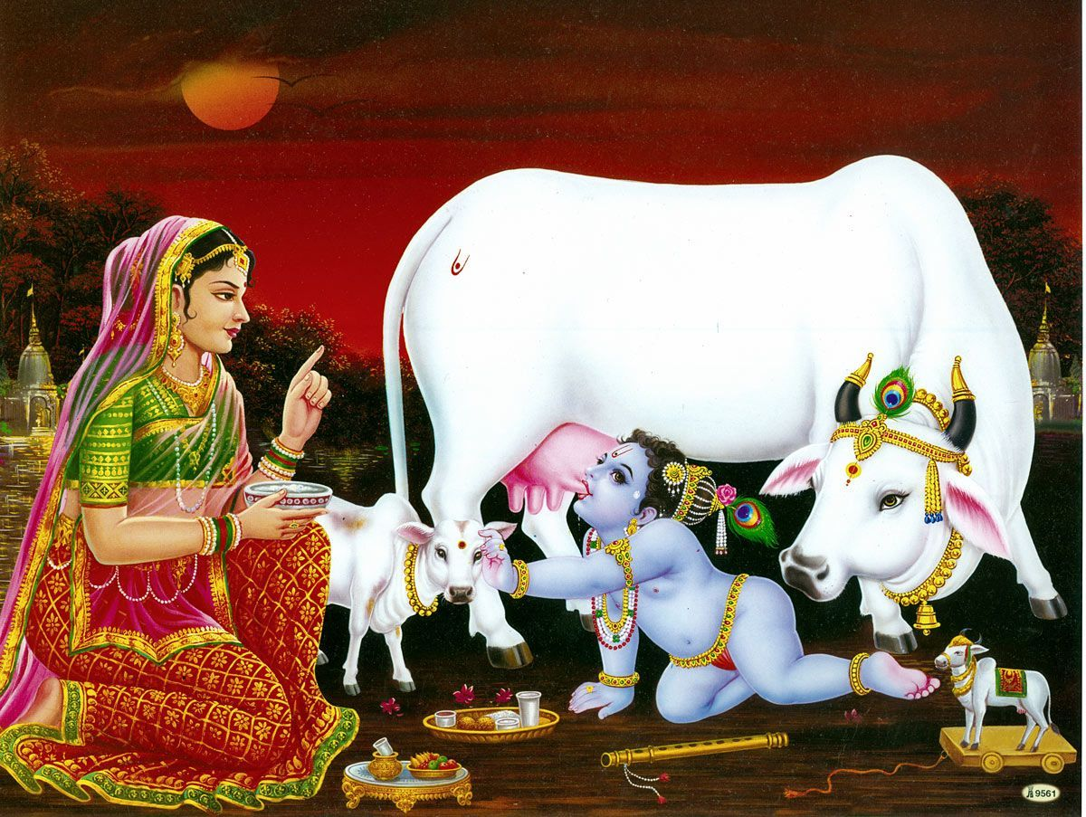 Yashoda Reprimands Bal Gopal Drinking Milk From Cows Udder In 2019