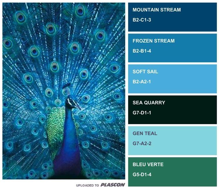 """Plascon Blue Paint Colours """"What An Inspiration"""" (B1-A1-4"""
