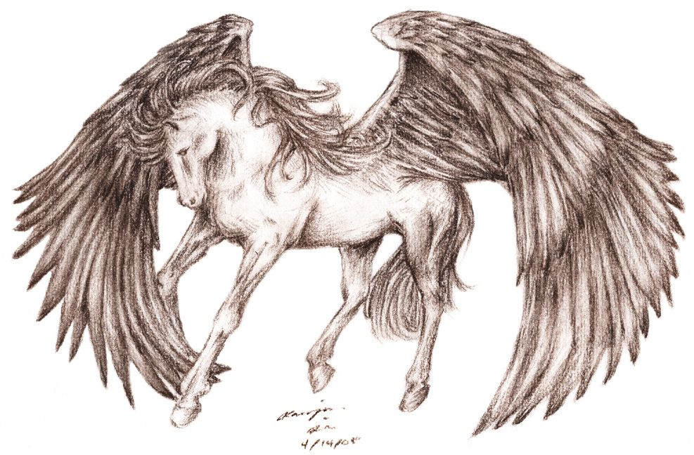 Google Image Result for http://fc08.deviantart.net/fs7/i/2005/193/5/d/Pegasus_by_baileymcdoogle.jpg
