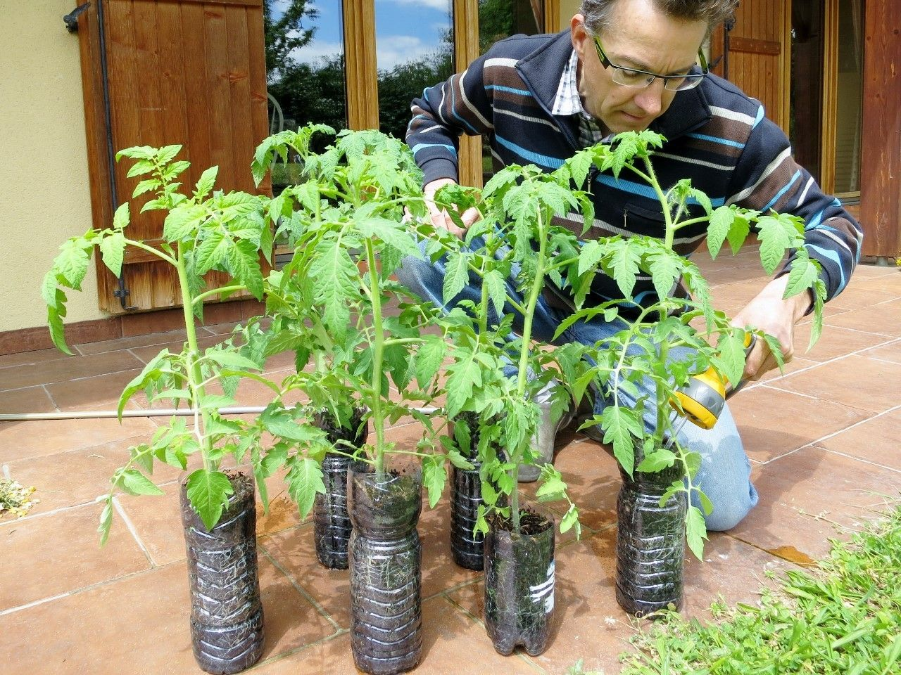 Ma culture de tomates en pots Potager tomates, Design de