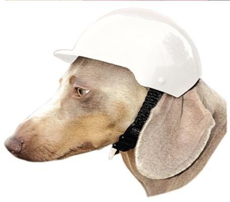 3 sizes Pet Riding Helmet ABS Plastic Doggie Bike Bicycle Motorcycle Cap