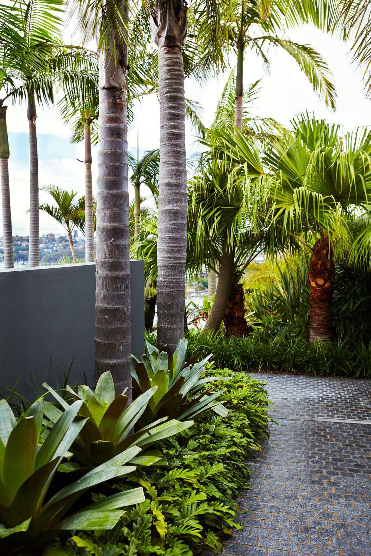 Sydney Tropical Garden Design: Outdoor Establishments ...