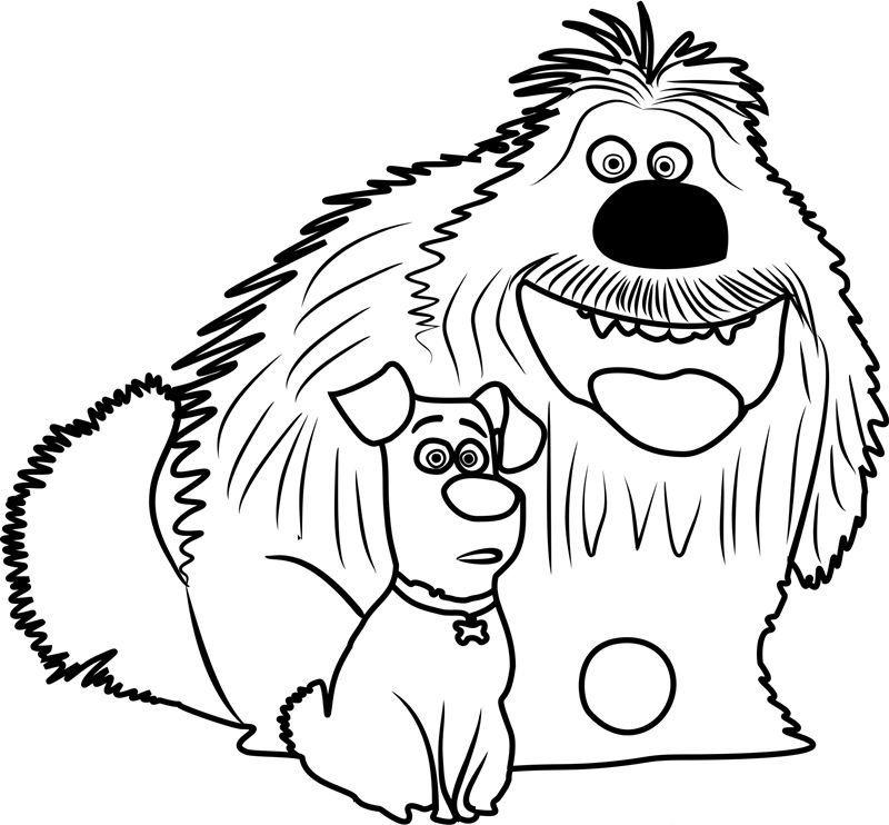 The Secret Life Of Pets Coloring Pages Secret Life Of Pets Coloring Pages Animals For Kids