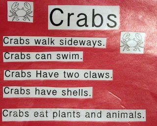 Brilliant Bundles: Crab Crafts and Activities for an Ocean Theme - Preschool