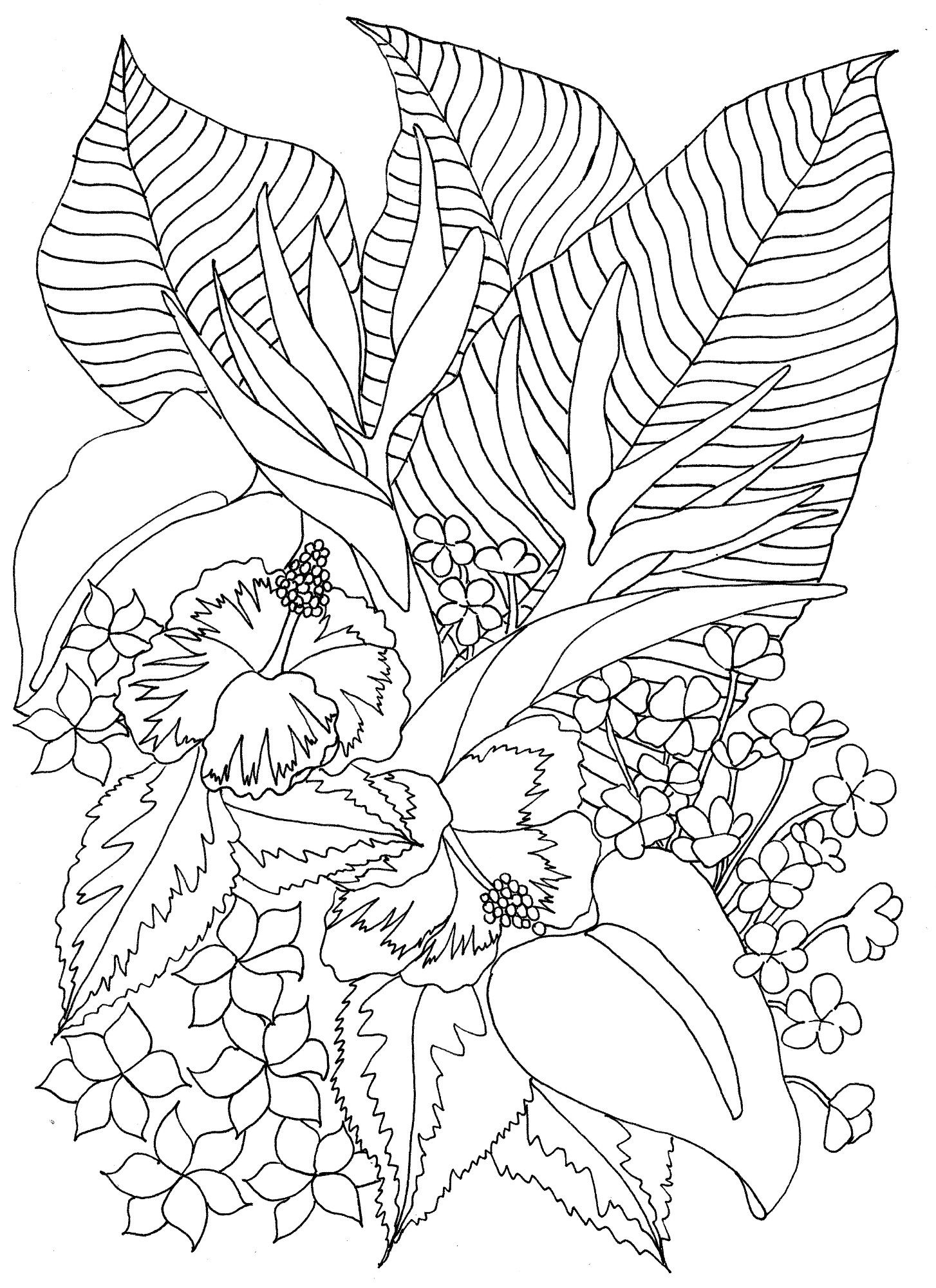 tropical flowers coloring pages - Tropical Coloring Pages