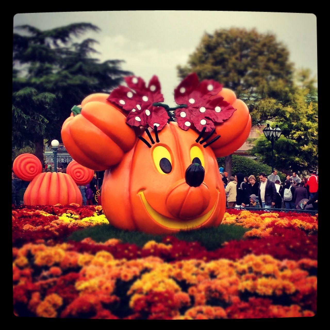 Disneyland paris october 2012 disney halloween