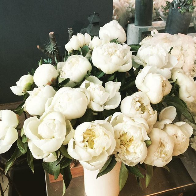 Vancouver Wedding Flowers: Awesome Vancouver Florist Theses Dutch Peonies Are