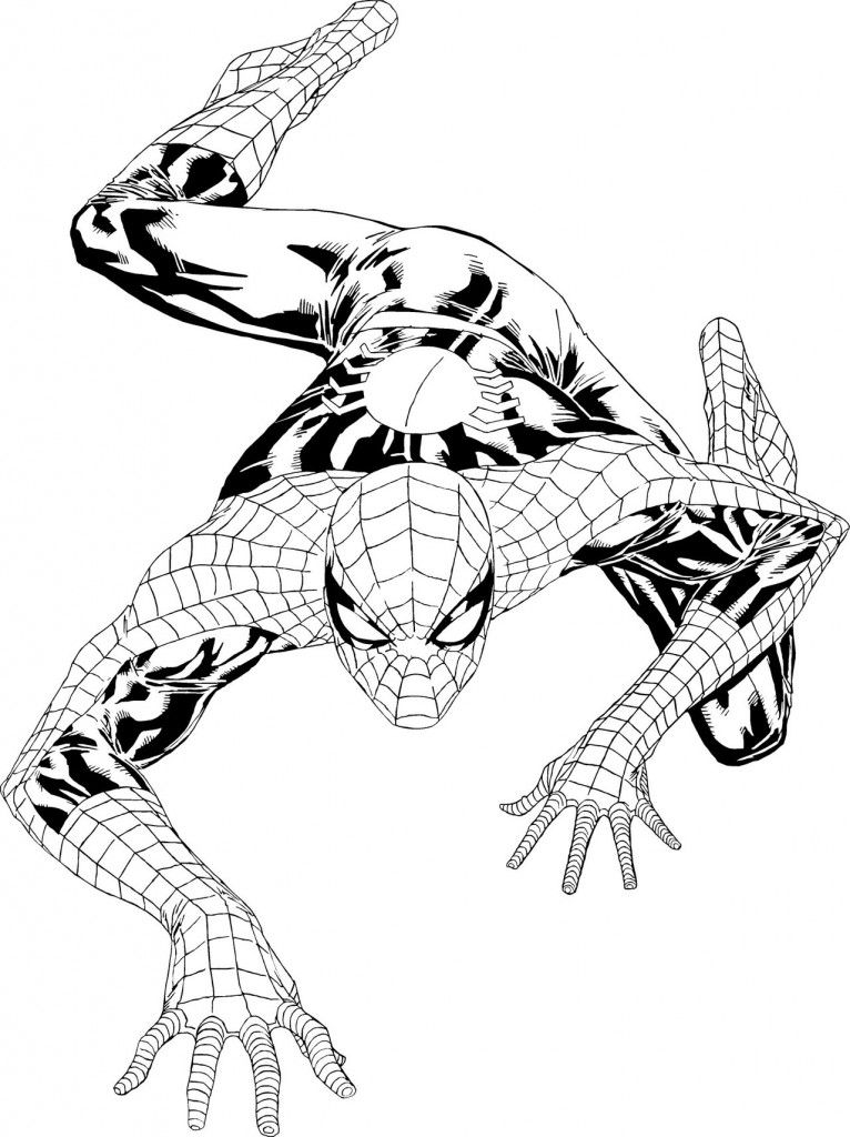 Free Printable Spiderman Coloring Pages For Kids Spiderman Coloring Coloring Pages To Print Coloring Pages