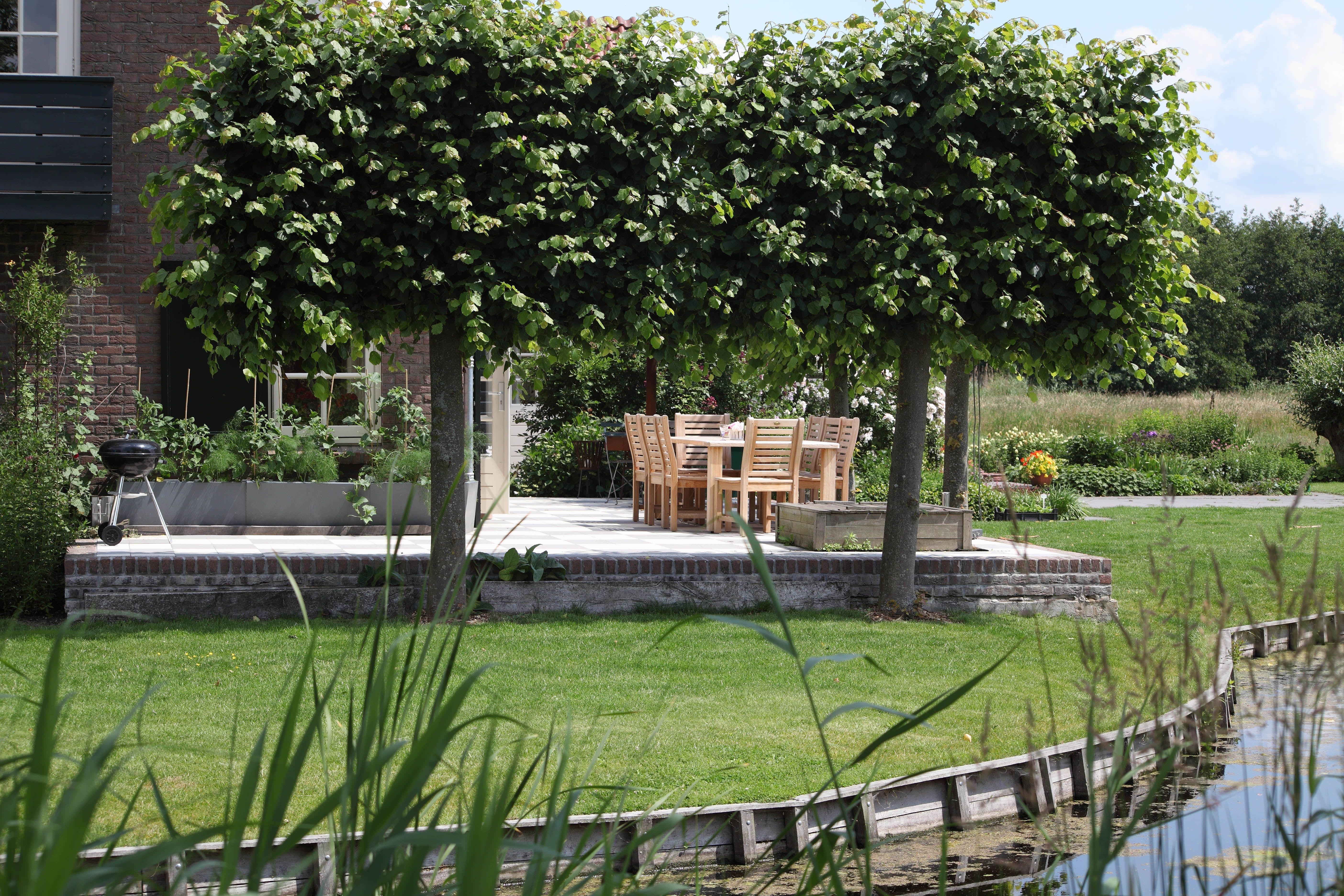Tuin tuinontwerp tuinarchitect hovenier hoveniersbedrijf for Tuinarchitect kleine tuin