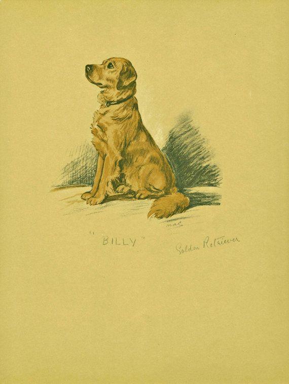 Golden Retriever Dog Print Lucy Dawson Wall Art Home Decor Art