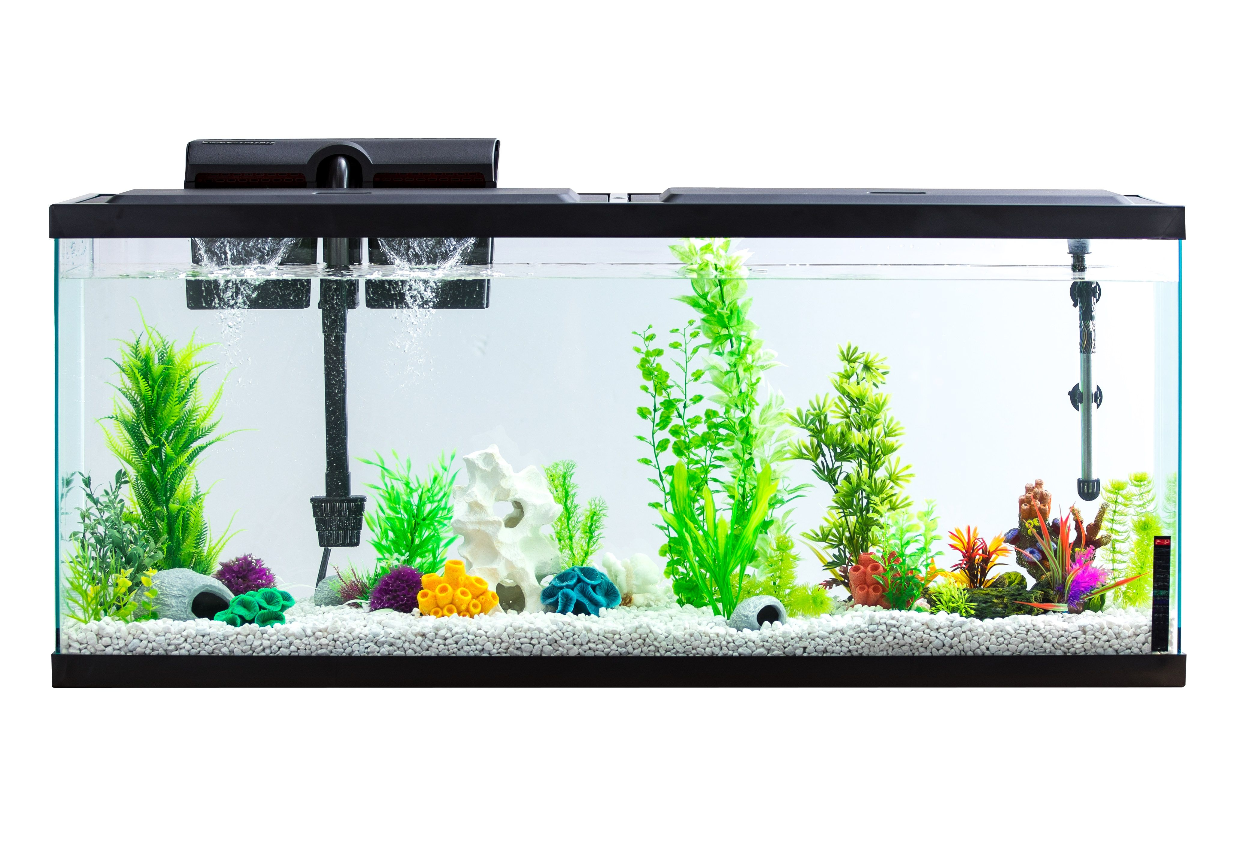 Pin On Fishkeeping Aquarium Planted Tank And Fish