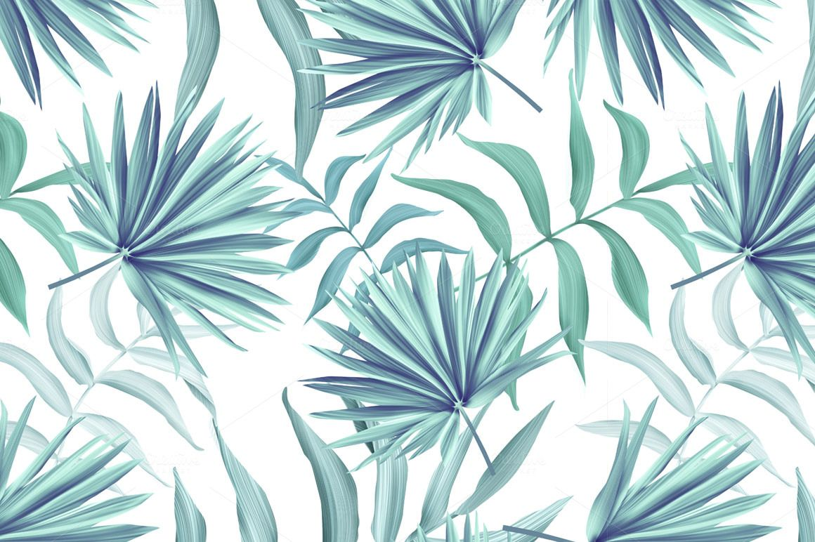 Tropical Pattern Jungle Palm Leaves Leaf Background Palm