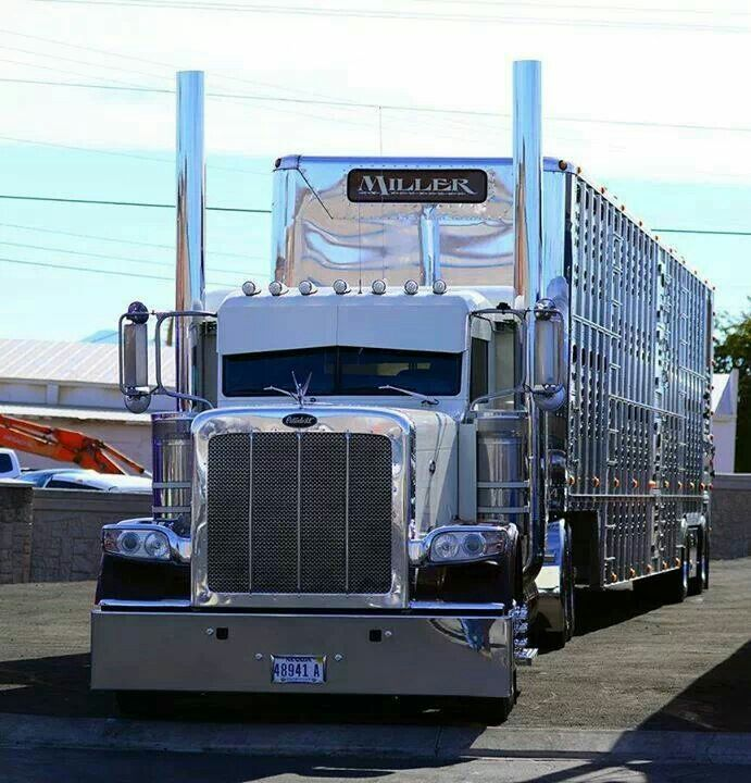 Peterbilt And Cattle Trailer With Images Trucks Big Trucks