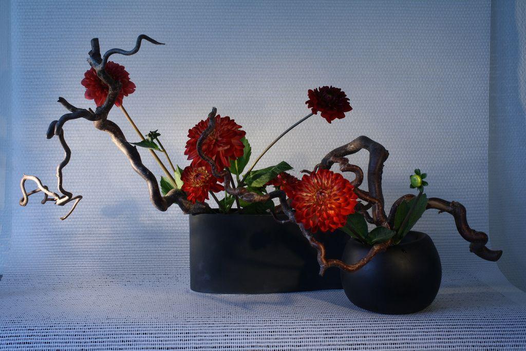 All sizes | Ikebana by Jeroen Vermaas | Flickr - Photo Sharing!