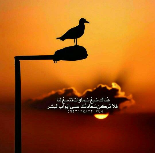 Pin By Sumoud Jaradat On كلمات Arabic Quotes Arabic Love Quotes Snapchat Quotes