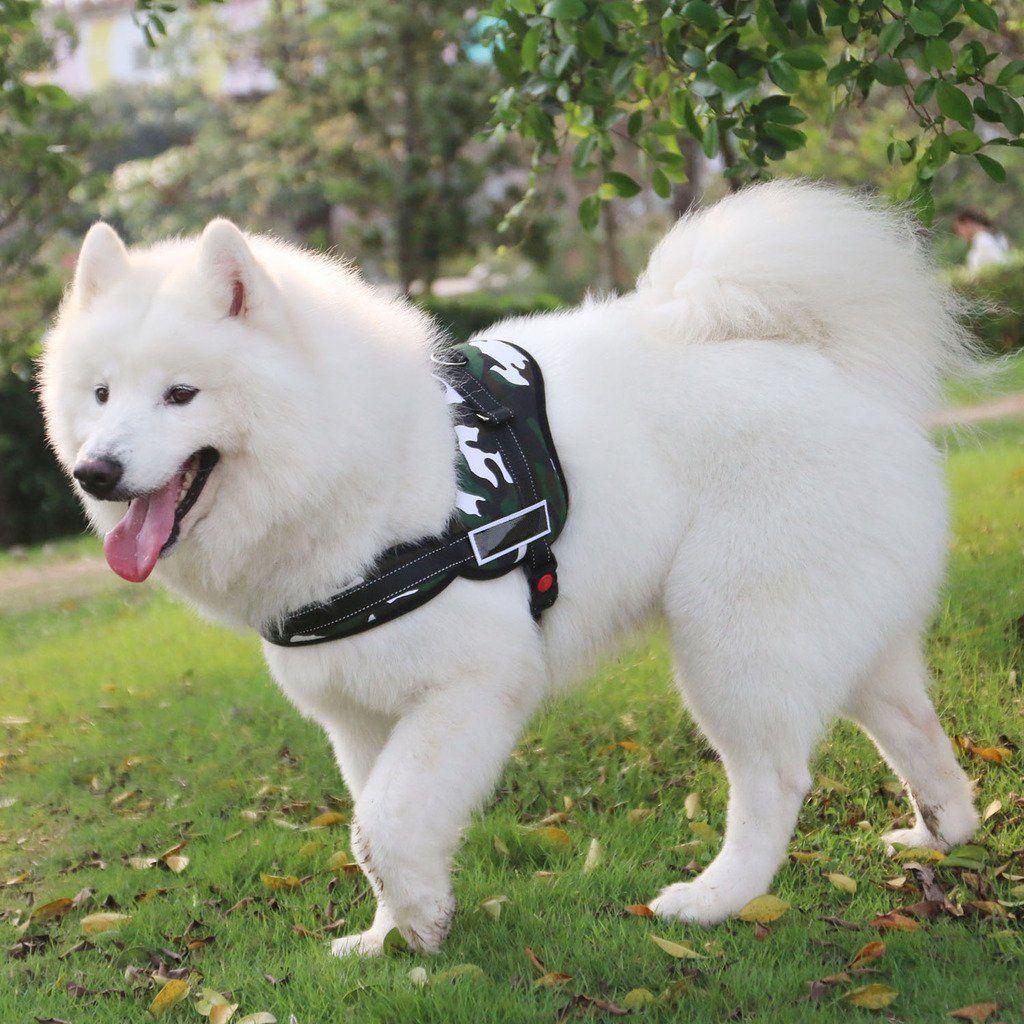 Dealikee Dog Vest Harness No Pull No Choke No Slip Dog Body