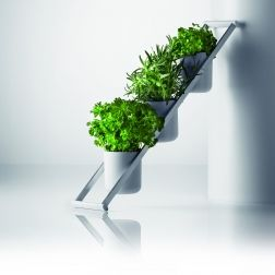 Emmo Home - Herb Ladder by Menu