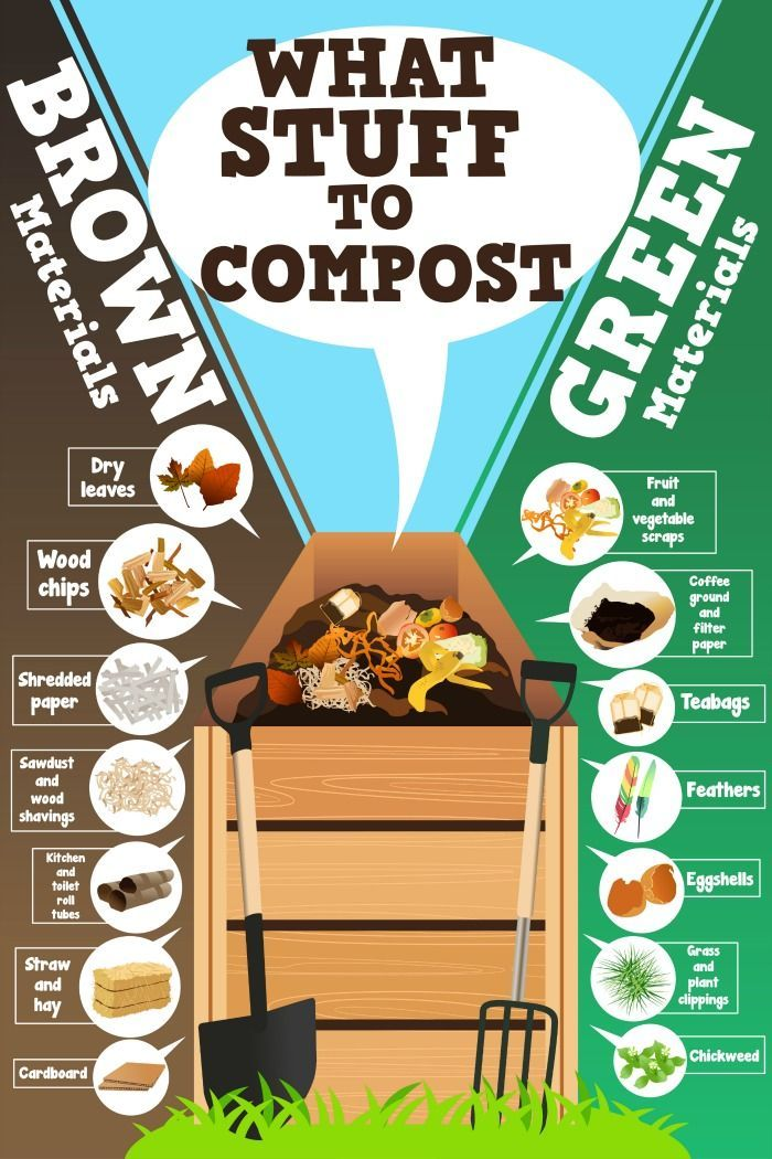 COMPOST THIS, NOT THAT - EASY COMPOSTING FOR BEGINNERS