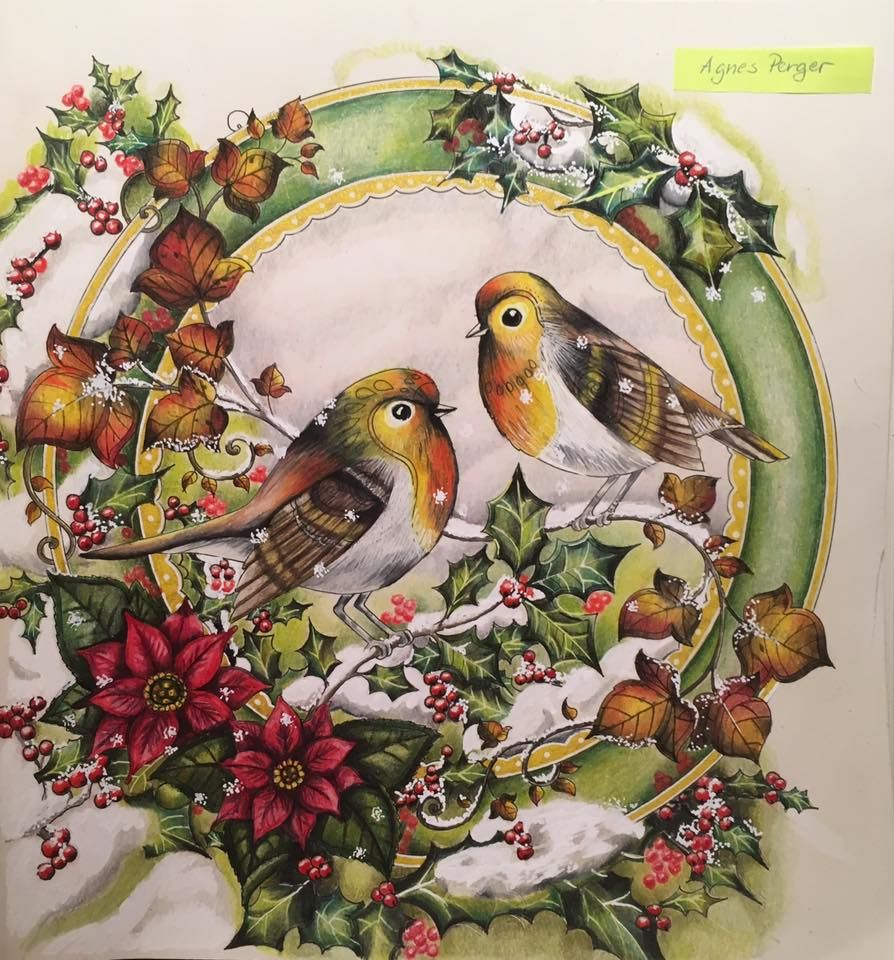 Johanna Basford's Christmas | Johanna basford christmas ...
