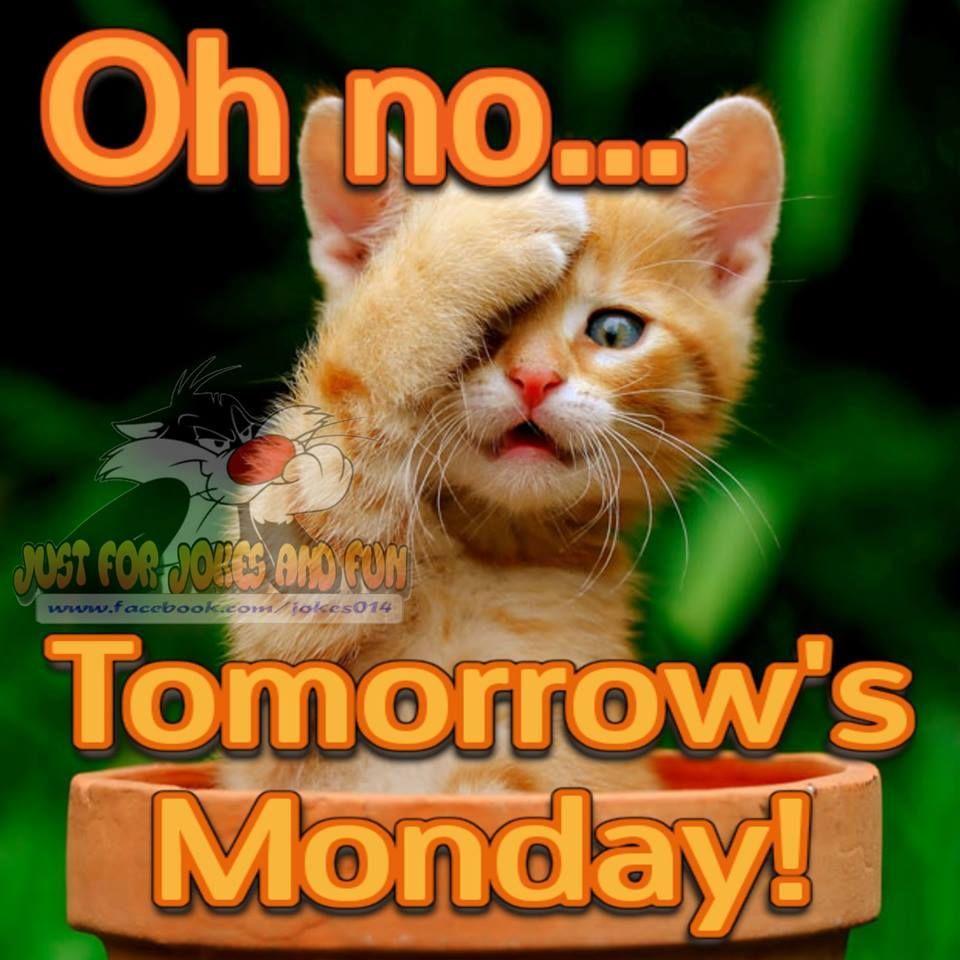 Oh No... Tomorrow's Monday and I'm not ready!