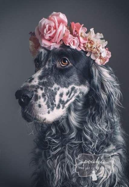 Photography Girl Portrait Flower 47+ New Ideas #dogsphotography