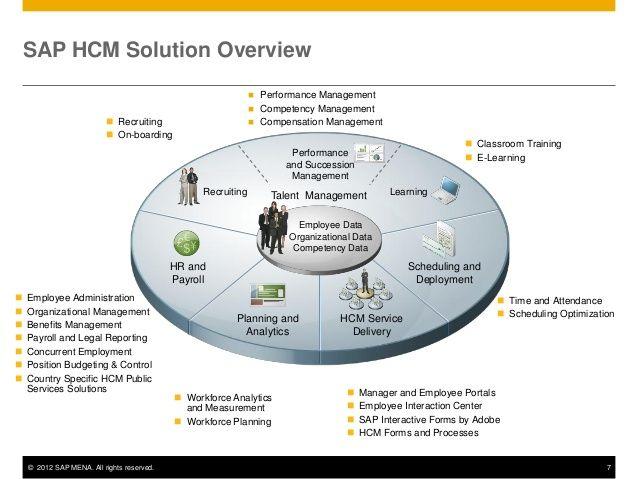 itchamps #SAP #HCM Solution | SAP HCM | Success factors, Human
