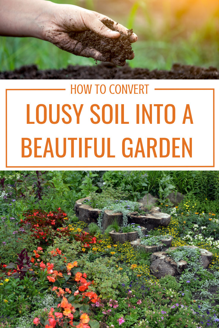 Understanding What Soil You Have Is The Best Place To Start When Creating A Healthy