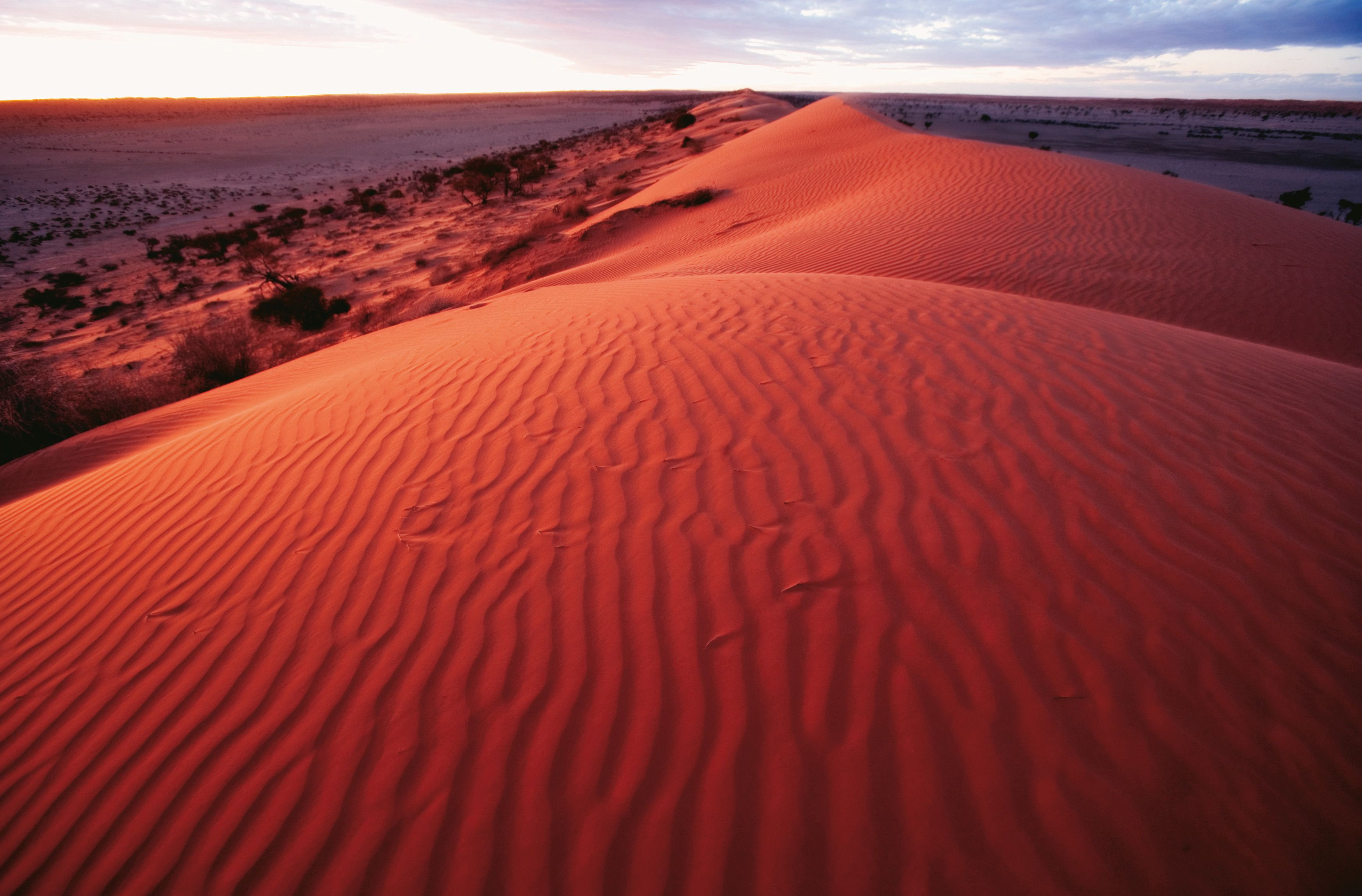 Dramatic red sand dunes near Birdsville, Outback Queensland.