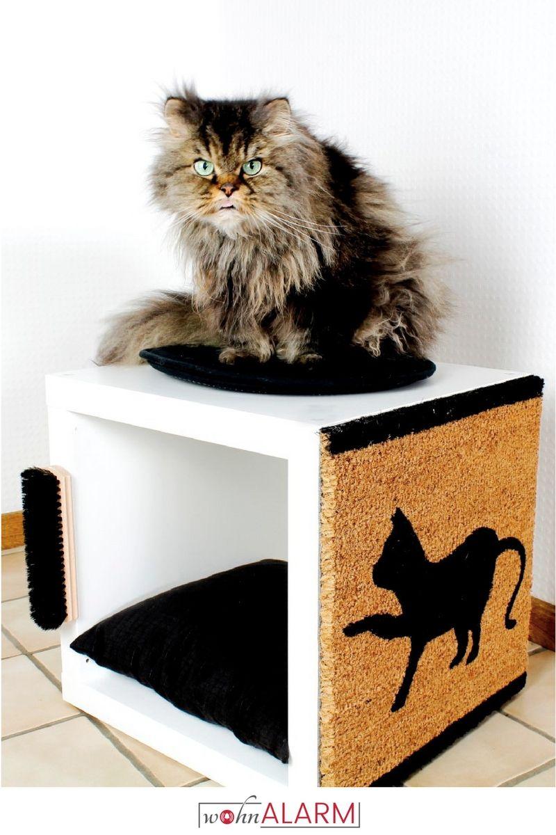 Ikea Hack: Katzenkratzbaum Aus Kallax Regal! Einfach Und Schnell Selbst  Gemacht!