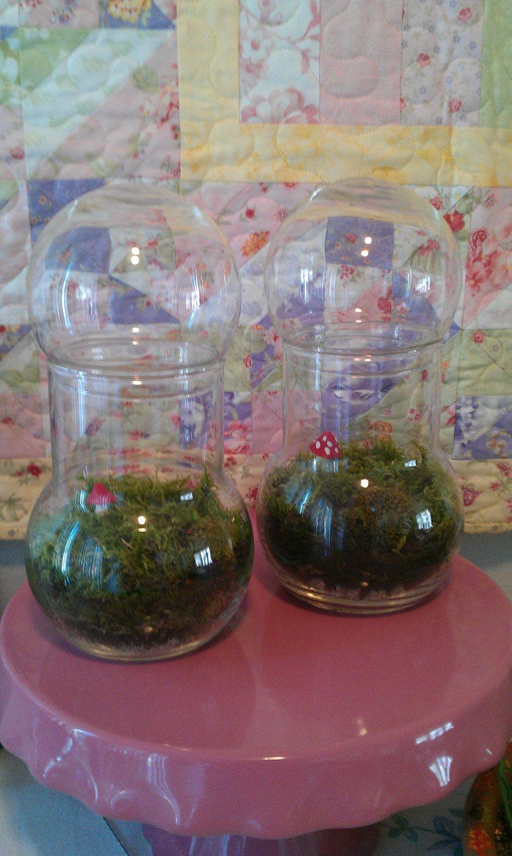 Bubble Apothecary Jar Terrarium- No. T2. $25.00, via Etsy.
